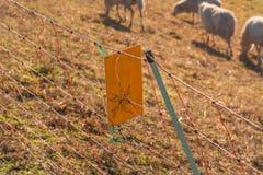 在力量下的警报信号Weidezaun 图库摄影