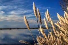 在加利福尼亚盐水湖的反射的云彩 库存照片