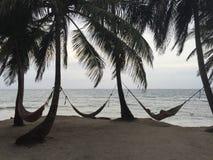 在加勒比放松 库存图片