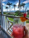 在加勒比样式的鸡尾酒 免版税库存图片