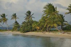 在加勒比海滩小条的冲浪板 免版税库存图片