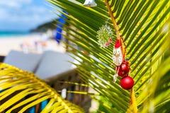 在加勒比的田园诗海滩 免版税库存图片