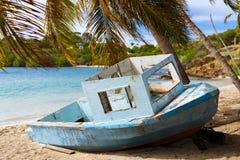 在加勒比的美丽的热带海岸 免版税库存图片