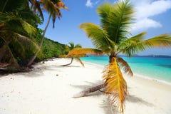 在加勒比的美丽的热带海滩 免版税图库摄影