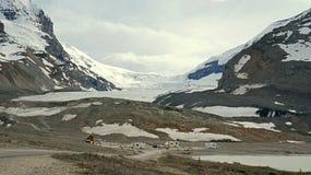 在加拿大人罗基斯的后退Athabasca冰川 免版税图库摄影