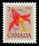 在加拿大打印的邮票显示花:红色鸽子似 库存图片