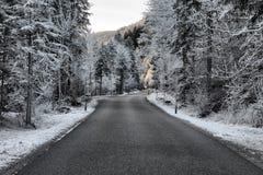 在加米施・帕藤吉兴,德国附近的冻结的自然 免版税库存图片