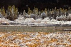 在加米施・帕藤吉兴,德国附近的冻结的自然 库存照片