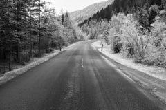 在加米施・帕藤吉兴,德国附近的冻结的自然 免版税图库摄影