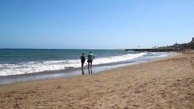 在加那利群岛的美丽的海滩充分的HD的 股票录像
