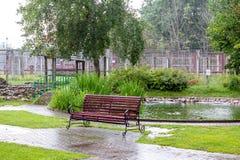 在动物园的空的长凳在一个雨天 免版税库存照片