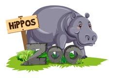 在动物园的野生河马 皇族释放例证