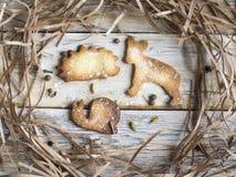 在动物形状的自创曲奇饼 免版税库存照片
