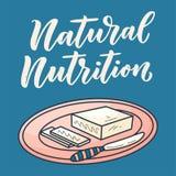在动画片样式的黄油在背景 传染媒介乱画例证 鲜美早餐饮食健康食品 牧场地和营养 向量例证