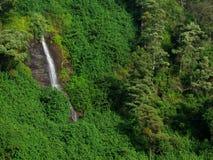 在努沃勒埃利耶的暗藏的瀑布 库存图片