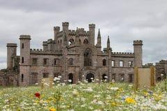 在劳瑟城堡的野花 免版税库存照片
