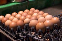 在包裹的新鲜的蛋食品成分在桌上 免版税库存图片