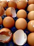 在包裹的残破的鸡蛋 库存图片