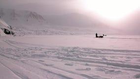 在北极狗雪撬队多壳的爱斯基摩路的人远征在北极 股票视频