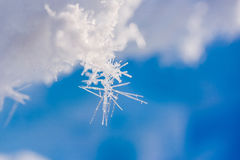 在北极雪平原雪立方体样式雪花的阵营Barneo排行 库存照片
