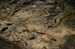 在北欧海盗埋葬船的遗骸- Ladby船 库存照片