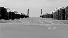 在北海用木材建造在海滩的groynes 库存照片