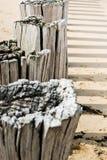 在北海用木材建造在海滩的groynes 免版税库存照片