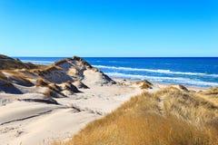 在北海的沙丘在斯卡恩,丹麦附近 库存照片