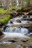 在北科罗拉多Laramie山的Killpecker小河  库存照片