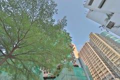 在北角的城市更新项目 图库摄影