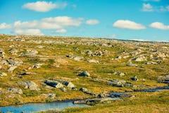 在北角附近的寒带草原在挪威 免版税库存图片