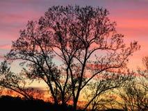 在北部乔治亚山的日落-桃红色 库存图片