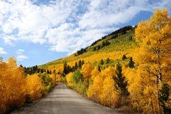 在北风之通过的秋天 免版税库存照片