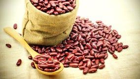在匙子和堆的红豆在苴的红豆 库存照片
