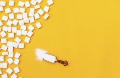 在匙子和糖立方体的白糖在橙色背景 免版税图库摄影