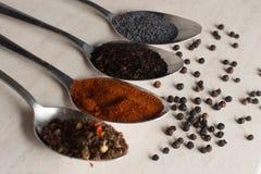 在匙子在桌上,胡椒,土耳其香料,东方香料的香料 库存图片