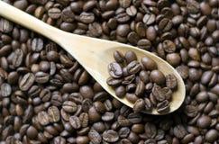 在匙子的咖啡豆 图库摄影