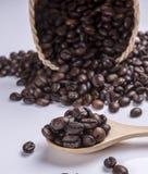 在匙子的咖啡豆 免版税库存照片