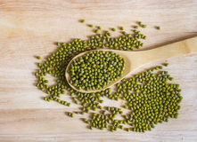 在匙子的干和未煮过的绿豆在木背景 库存照片