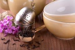 在匙子的干茶在茶具前面 免版税图库摄影