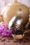 在匙子的干茶有过滤器和水壶的 免版税库存图片