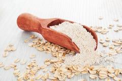 在匙子的燕麦整粒面粉 免版税库存照片
