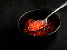 在匙子的粗大红色鱼子酱在黑背景 库存图片