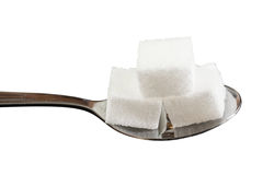 在匙子的糖立方体 图库摄影