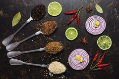 在匙子的香料在黑暗的背景 红洋葱切片,石灰,甜椒,芝麻,亚麻,香菜 在视图之上 平的位置 免版税库存图片