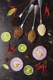 在匙子的香料在黑暗的背景 红洋葱切片,石灰,甜椒,芝麻,亚麻,香菜 顶视图,垂直的框架 图库摄影