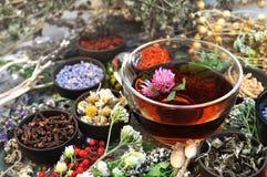在医药花和草本背景的健康清凉茶 免版税图库摄影