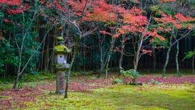 在十三弦琴在Daitokuji寺庙一个次级寺庙的秋天在京都 库存照片