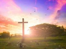 在十字架的耶稣基督慈悲在山日落背景他要崇拜神的儿子的信仰 图库摄影