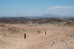 在千岁兰平原的月亮风景与人走 图库摄影